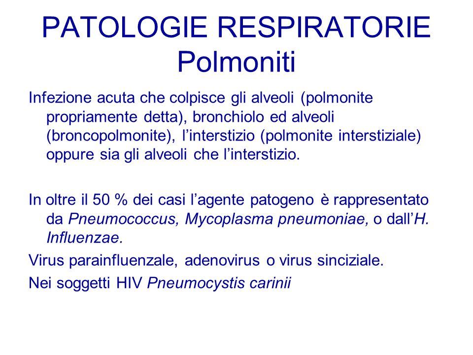 PATOLOGIE RESPIRATORIE Polmoniti Infezione acuta che colpisce gli alveoli (polmonite propriamente detta), bronchiolo ed alveoli (broncopolmonite), lin
