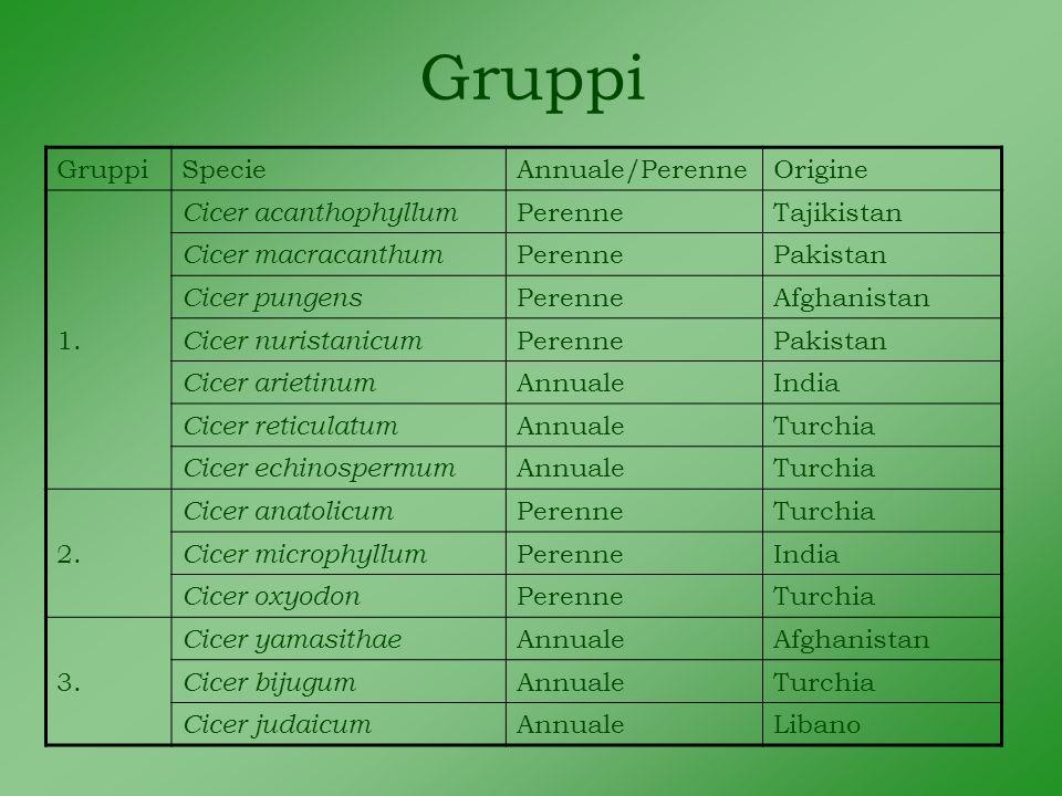 Gruppi SpecieAnnuale/PerenneOrigine 1.