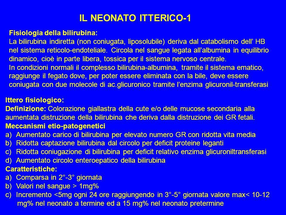 IL NEONATO ITTERICO-1 Fisiologia della bilirubina: La bilirubina indiretta (non coniugata, liposolubile) deriva dal catabolismo dell HB nel sistema re
