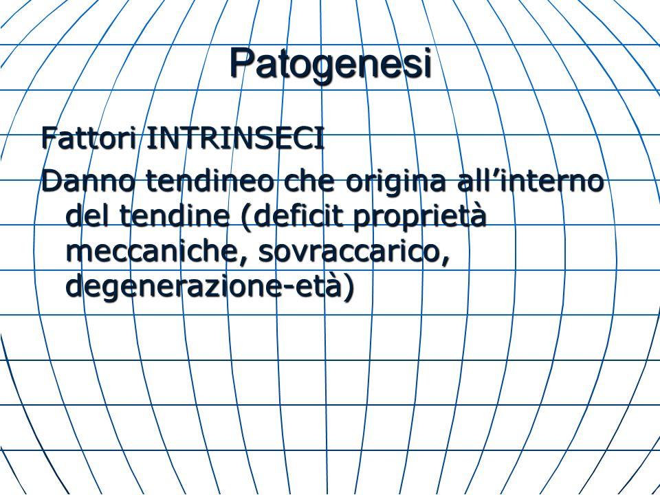 Patogenesi Fattori INTRINSECI Danno tendineo che origina allinterno del tendine (deficit proprietà meccaniche, sovraccarico, degenerazione-età)