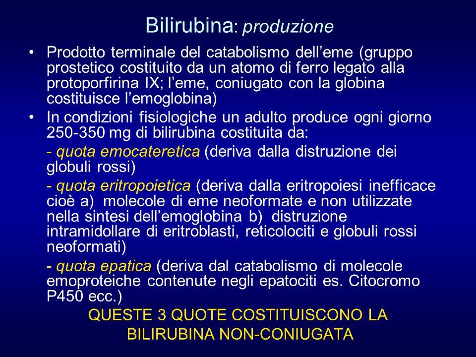 Bilirubina : produzione Prodotto terminale del catabolismo delleme (gruppo prostetico costituito da un atomo di ferro legato alla protoporfirina IX; l