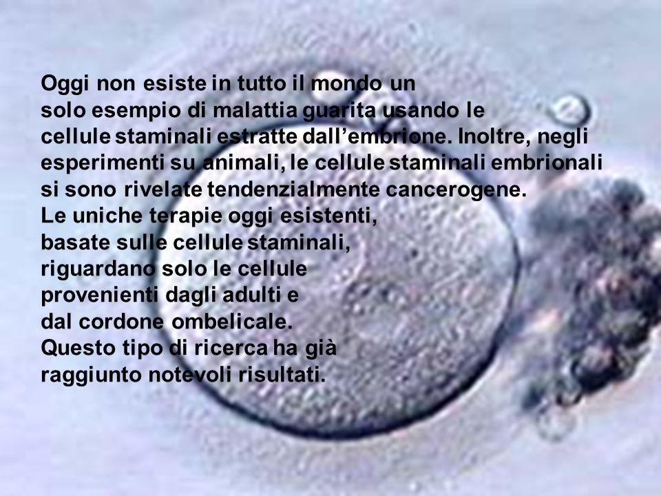 Oggi non esiste in tutto il mondo un solo esempio di malattia guarita usando le cellule staminali estratte dallembrione. Inoltre, negli esperimenti su