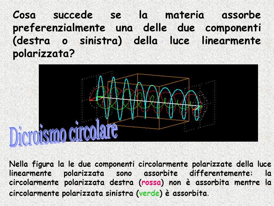 Cosa succede se la materia assorbe preferenzialmente una delle due componenti (destra o sinistra) della luce linearmente polarizzata? Nella figura la