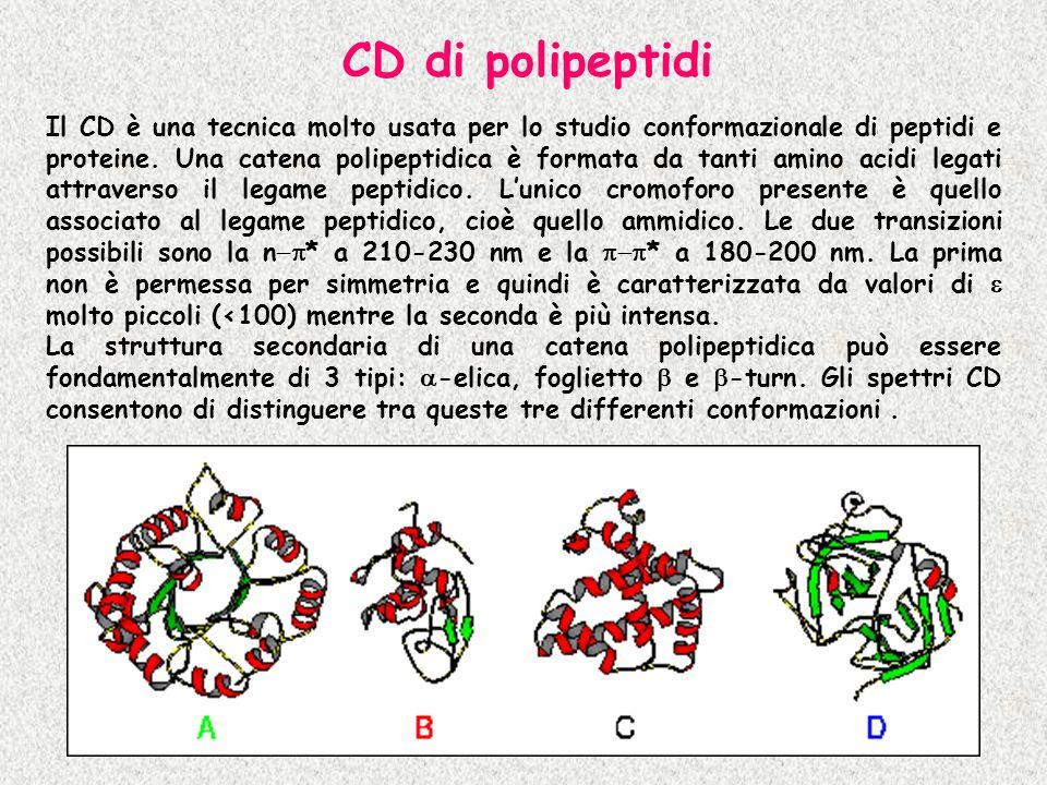 Il CD è una tecnica molto usata per lo studio conformazionale di peptidi e proteine. Una catena polipeptidica è formata da tanti amino acidi legati at