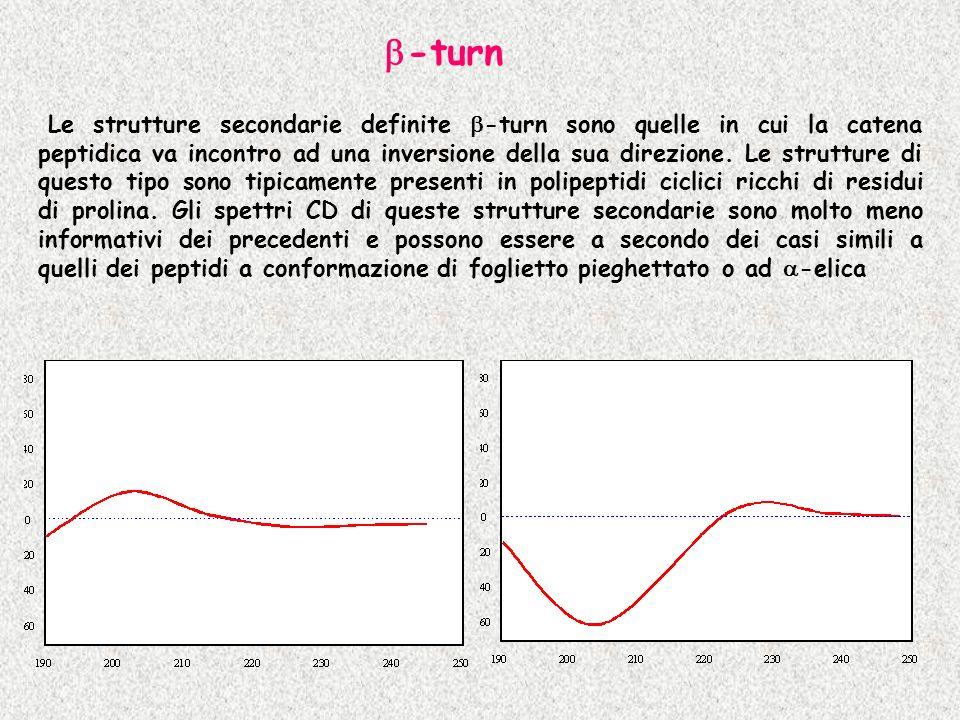 Le strutture secondarie definite -turn sono quelle in cui la catena peptidica va incontro ad una inversione della sua direzione. Le strutture di quest