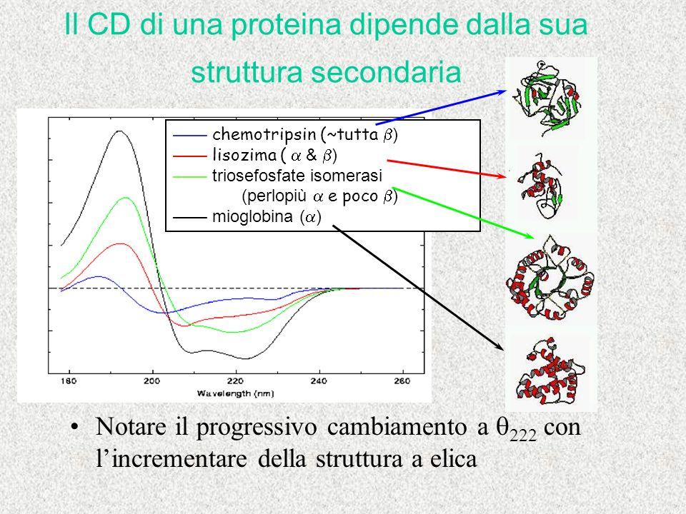 Notare il progressivo cambiamento a 222 con lincrementare della struttura a elica chemotripsin (~tutta ) lisozima ( & ) triosefosfate isomerasi (perlo