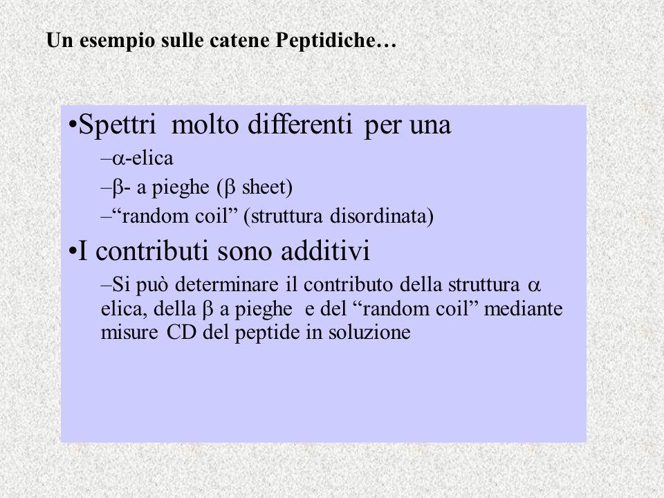 Un esempio sulle catene Peptidiche… Spettri molto differenti per una – -elica – - a pieghe ( sheet) –random coil (struttura disordinata) I contributi