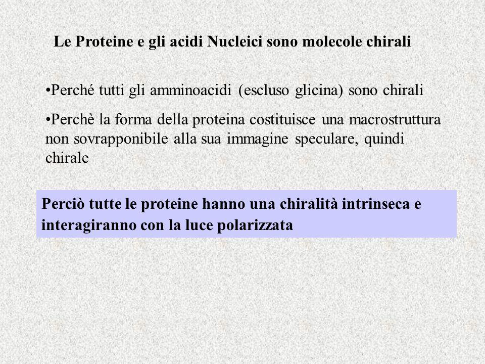 Le Proteine e gli acidi Nucleici sono molecole chirali Perché tutti gli amminoacidi (escluso glicina) sono chirali Perchè la forma della proteina cost