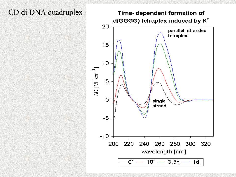 CD di DNA quadruplex