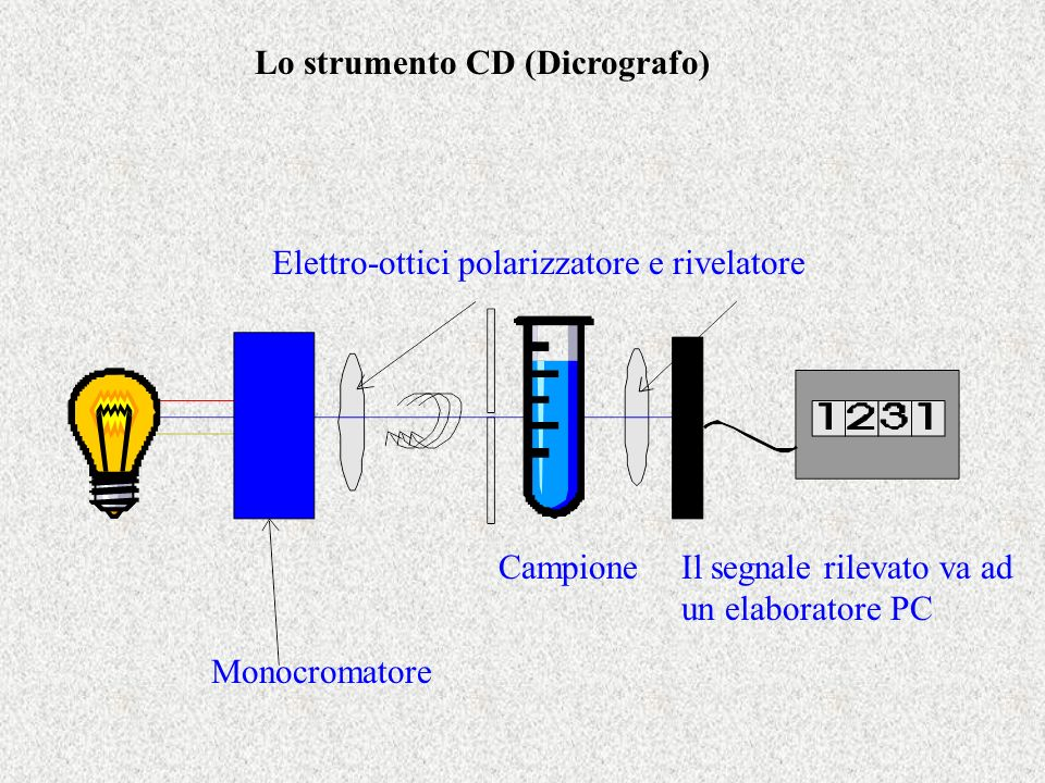 CD di DNA quadruplex