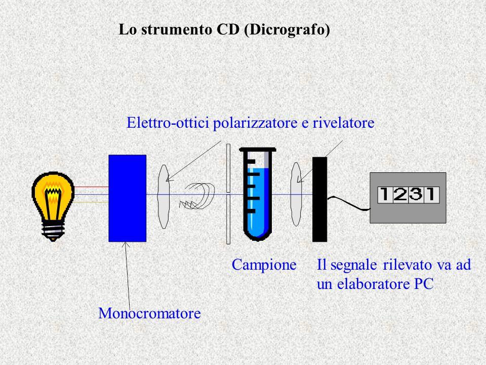 Monocromatore Elettro-ottici polarizzatore e rivelatore CampioneIl segnale rilevato va ad un elaboratore PC Lo strumento CD (Dicrografo)