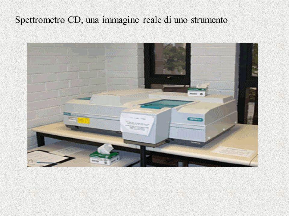 Spettrometro CD, una immagine reale di uno strumento