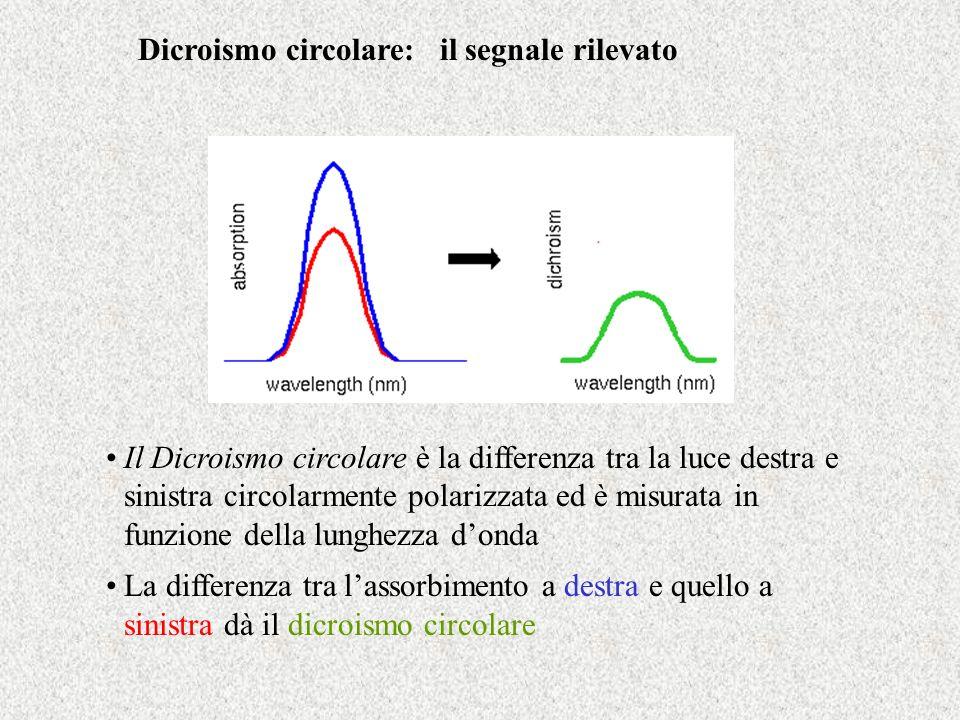 Dicroismo circolare: il segnale rilevato Il Dicroismo circolare è la differenza tra la luce destra e sinistra circolarmente polarizzata ed è misurata