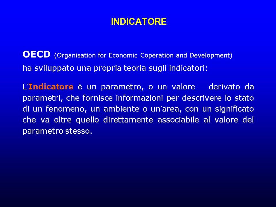 INDICATORE OECD (Organisation for Economic Coperation and Development) ha sviluppato una propria teoria sugli indicatori: L Indicatore è un parametro, o un valore derivato da parametri, che fornisce informazioni per descrivere lo stato di un fenomeno, un ambiente o un area, con un significato che va oltre quello direttamente associabile al valore del parametro stesso.