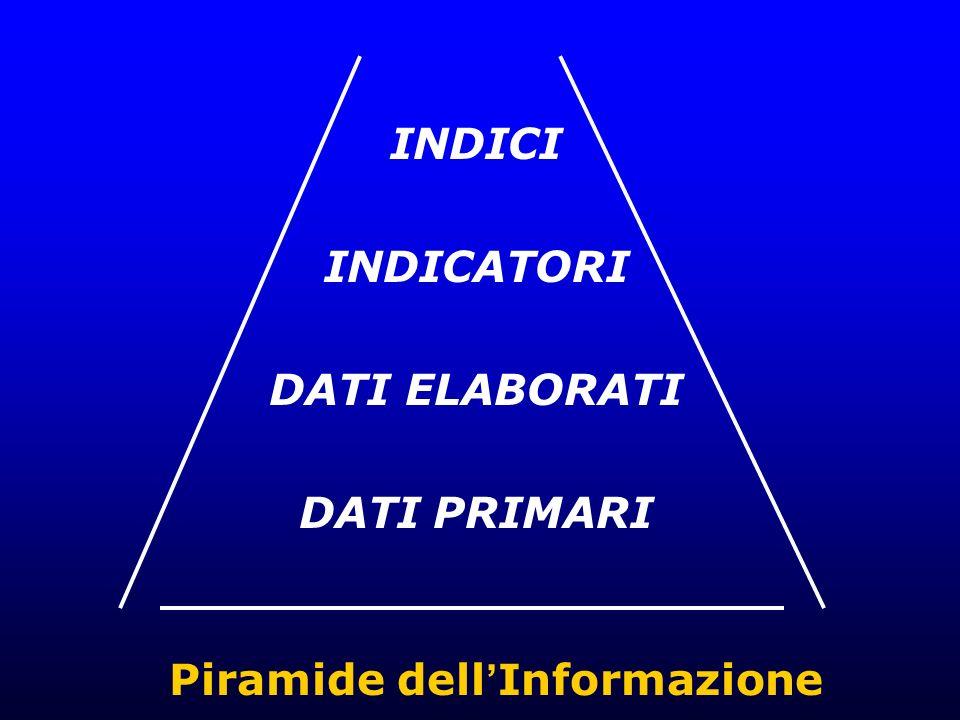 INDICI INDICATORI DATI ELABORATI DATI PRIMARI Piramide dell Informazione