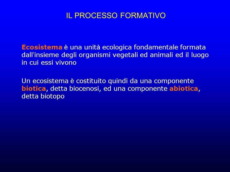 IL PROCESSO FORMATIVO Ecosistema è una unit à ecologica fondamentale formata dall insieme degli organismi vegetali ed animali ed il luogo in cui essi vivono Un ecosistema è costituito quindi da una componente biotica, detta biocenosi, ed una componente abiotica, detta biotopo
