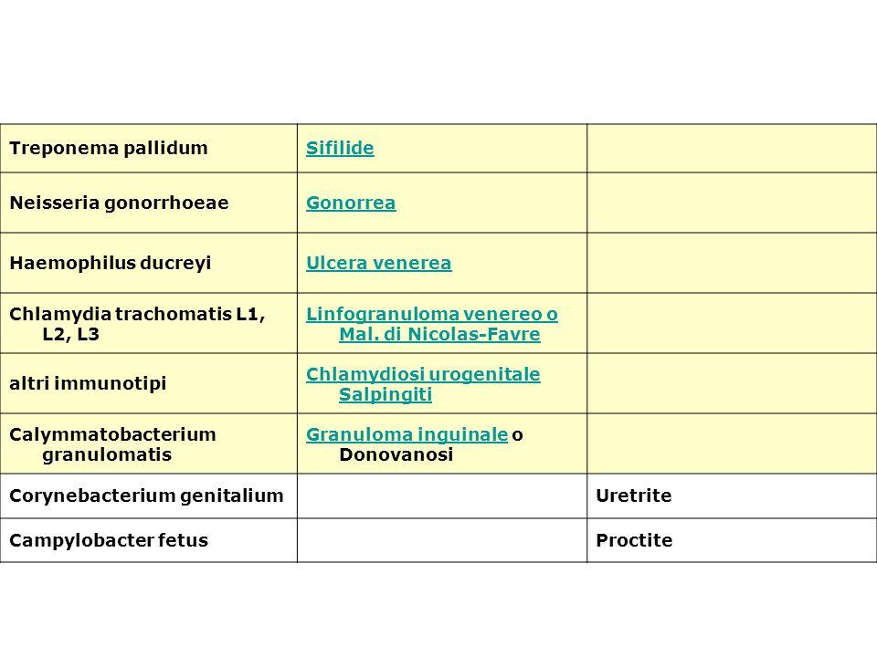 Treponema pallidumSifilide Neisseria gonorrhoeaeGonorrea Haemophilus ducreyiUlcera venerea Chlamydia trachomatis L1, L2, L3 Linfogranuloma venereo o M