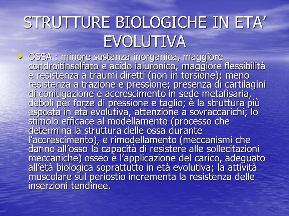 STRUTTURE BIOLOGICHE IN ETA EVOLUTIVA OSSA : minore sostanza inorganica, maggiore condroitinsolfato e acido ialuronico, maggiore flessibilità e resist