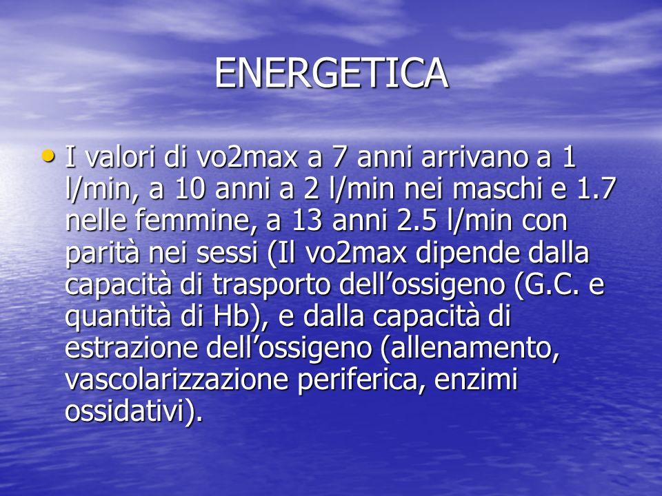 ENERGETICA I valori di vo2max a 7 anni arrivano a 1 l/min, a 10 anni a 2 l/min nei maschi e 1.7 nelle femmine, a 13 anni 2.5 l/min con parità nei sess
