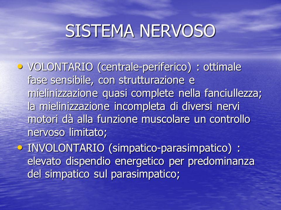 SISTEMA NERVOSO VOLONTARIO (centrale-periferico) : ottimale fase sensibile, con strutturazione e mielinizzazione quasi complete nella fanciullezza; la