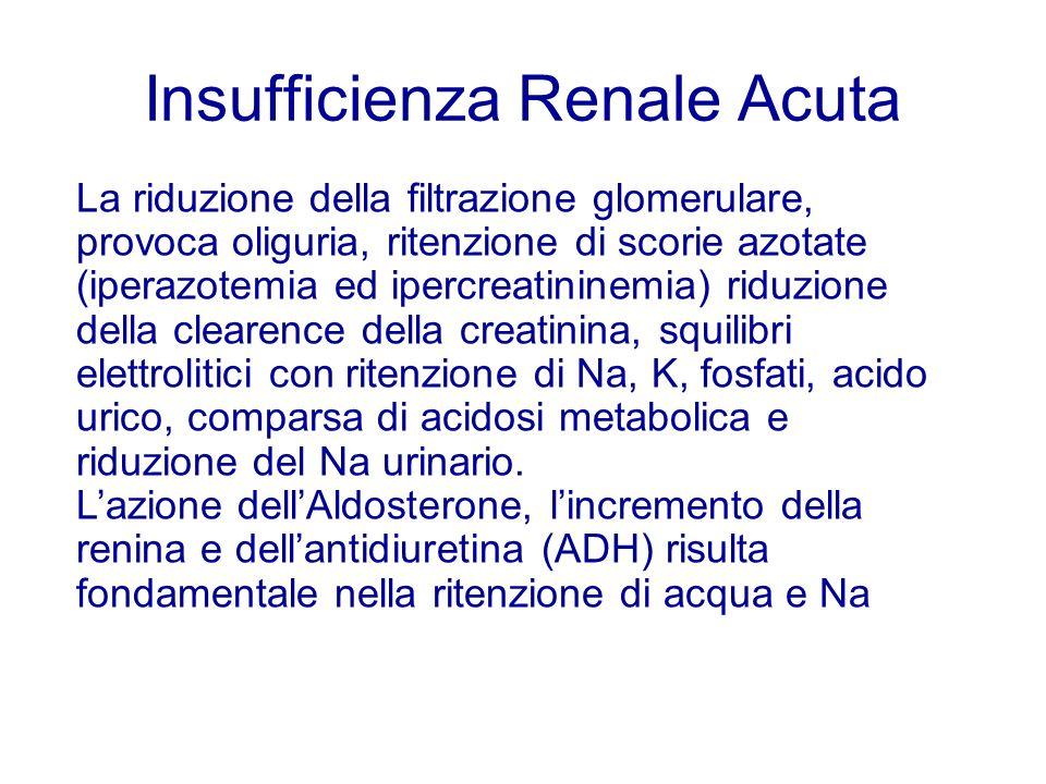 Insufficienza Renale Acuta La riduzione della filtrazione glomerulare, provoca oliguria, ritenzione di scorie azotate (iperazotemia ed ipercreatininem