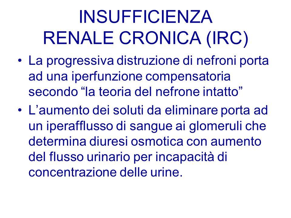 INSUFFICIENZA RENALE CRONICA (IRC) La progressiva distruzione di nefroni porta ad una iperfunzione compensatoria secondo la teoria del nefrone intatto