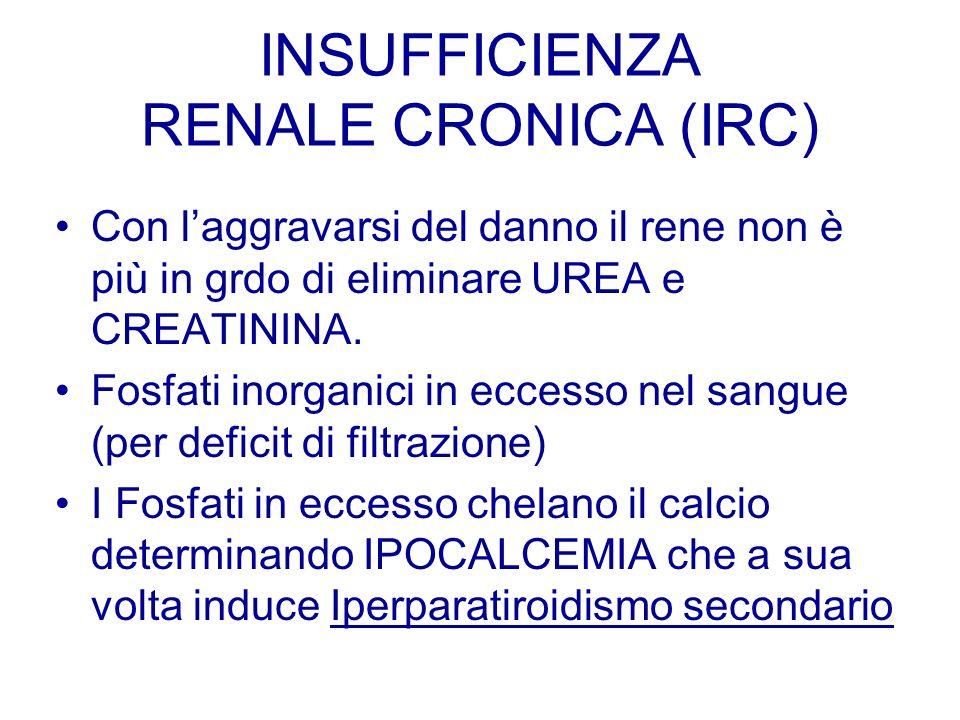 INSUFFICIENZA RENALE CRONICA (IRC) Con laggravarsi del danno il rene non è più in grdo di eliminare UREA e CREATININA. Fosfati inorganici in eccesso n