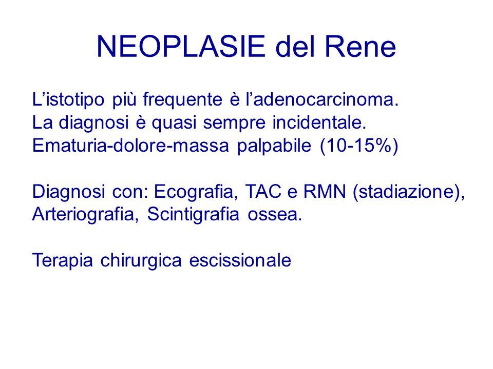 NEOPLASIE del Rene Listotipo più frequente è ladenocarcinoma. La diagnosi è quasi sempre incidentale. Ematuria-dolore-massa palpabile (10-15%) Diagnos