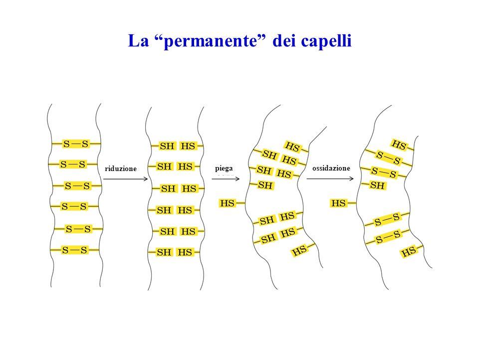 La permanente dei capelli riduzione piegaossidazione