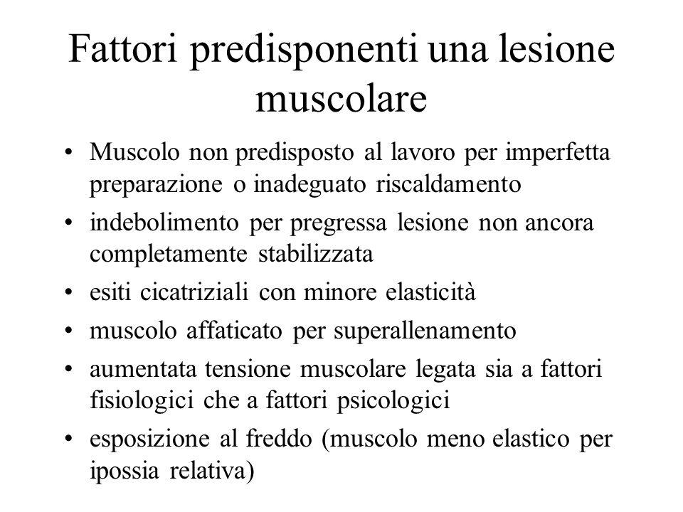 Fattori predisponenti una lesione muscolare Muscolo non predisposto al lavoro per imperfetta preparazione o inadeguato riscaldamento indebolimento per