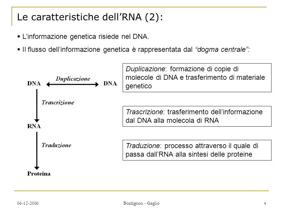 06-12-2006 Bordignon - Gaglio 4 Le caratteristiche dellRNA (2): Linformazione genetica risiede nel DNA.