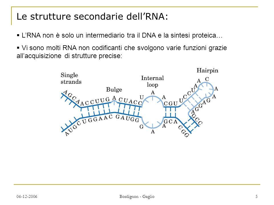 06-12-2006 Bordignon - Gaglio 5 LRNA non è solo un intermediario tra il DNA e la sintesi proteica… Vi sono molti RNA non codificanti che svolgono varie funzioni grazie allacquisizione di strutture precise: Le strutture secondarie dellRNA: