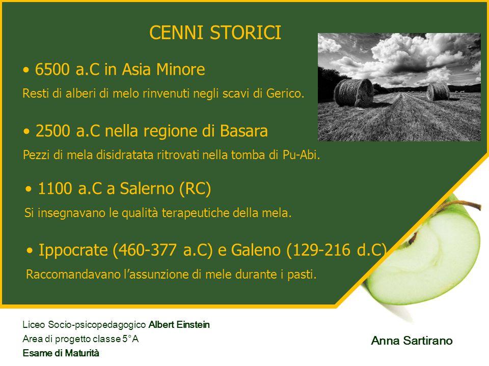 CENNI STORICI 6500 a.C in Asia Minore Resti di alberi di melo rinvenuti negli scavi di Gerico. 1100 a.C a Salerno (RC) Si insegnavano le qualità terap
