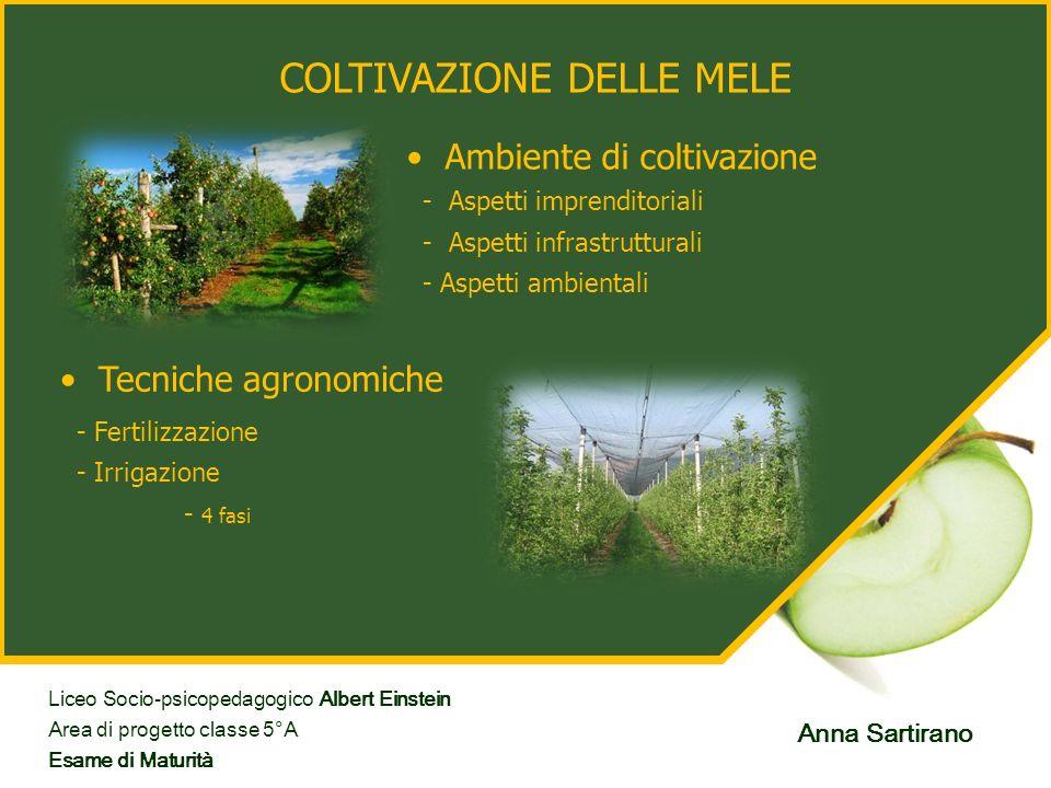 COLTIVAZIONE DELLE MELE Ambiente di coltivazione Tecniche agronomiche - Aspetti imprenditoriali - Aspetti infrastrutturali - Aspetti ambientali - Fert