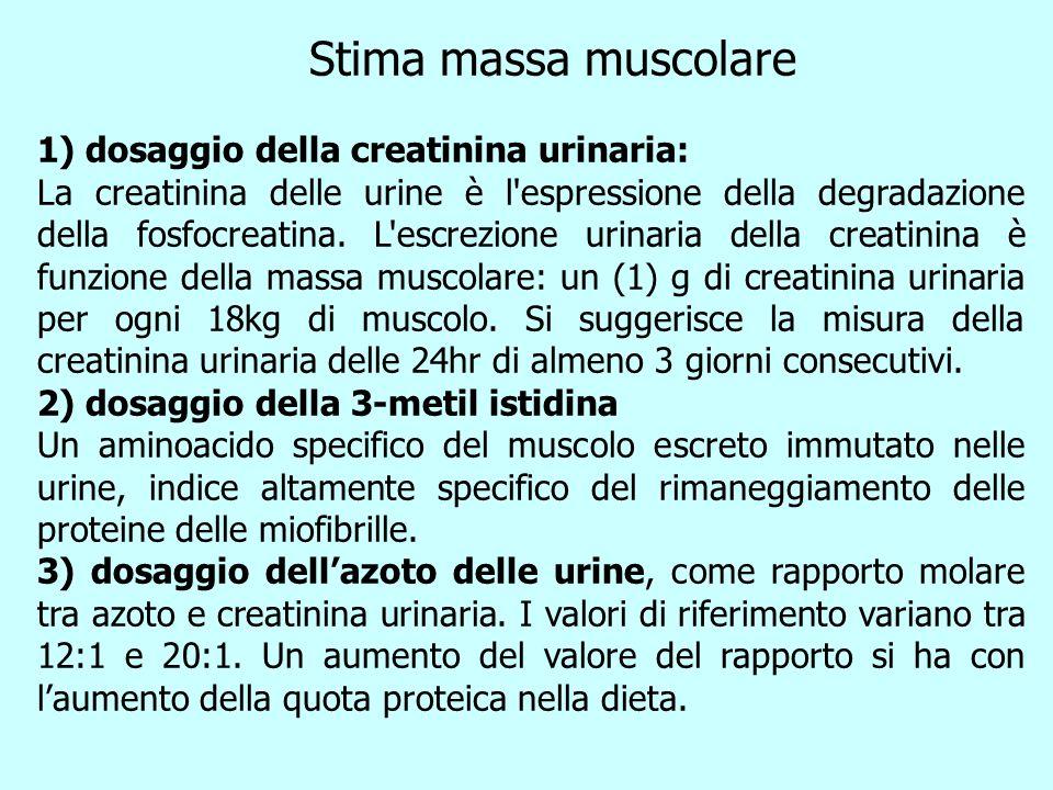 Stima massa muscolare 1) dosaggio della creatinina urinaria: La creatinina delle urine è l'espressione della degradazione della fosfocreatina. L'escre