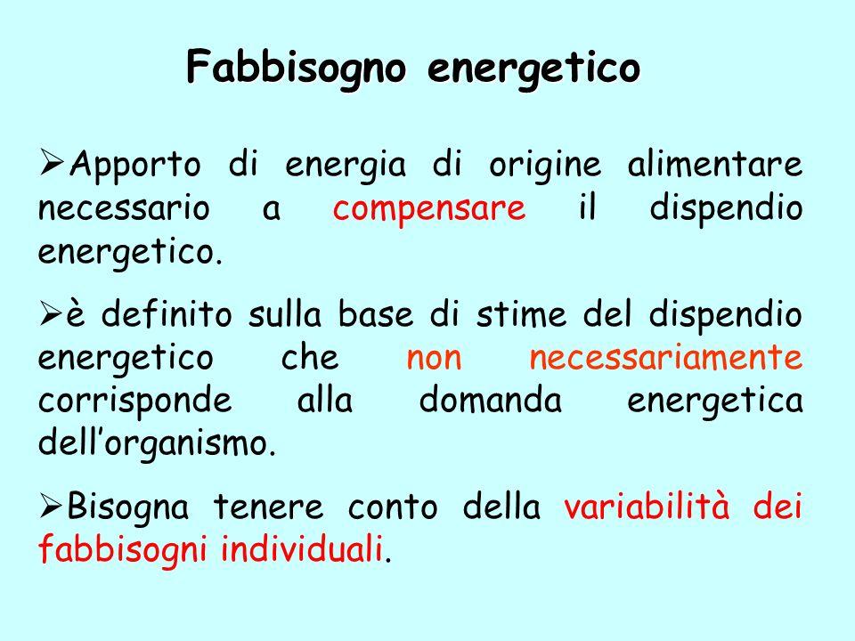 Fabbisogno energetico Apporto di energia di origine alimentare necessario a compensare il dispendio energetico. è definito sulla base di stime del dis
