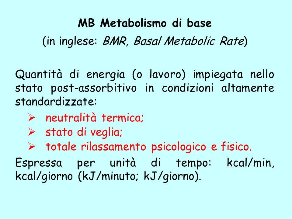 MB Metabolismo di base (in inglese: BMR, Basal Metabolic Rate) Quantità di energia (o lavoro) impiegata nello stato post-assorbitivo in condizioni alt