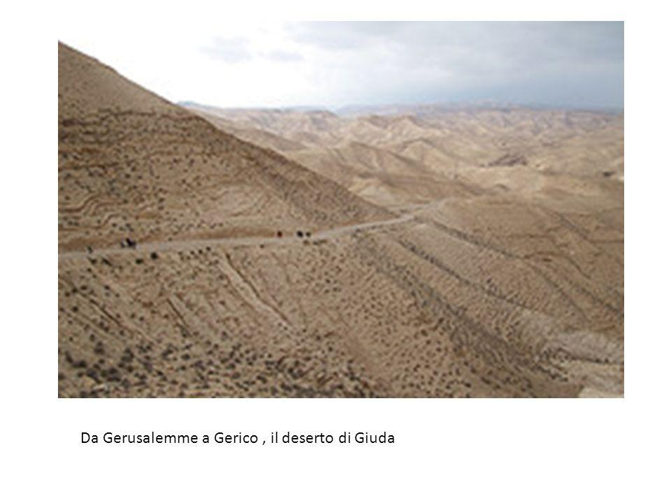 Da Gerusalemme a Gerico, il deserto di Giuda