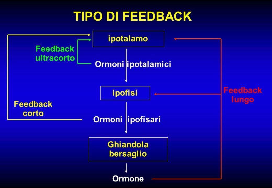 TIPO DI FEEDBACK ipotalamo ipofisi Ghiandola bersaglio Ormoni ipotalamici Ormoni ipofisari Ormone Feedback lungo Feedback corto Feedback ultracorto