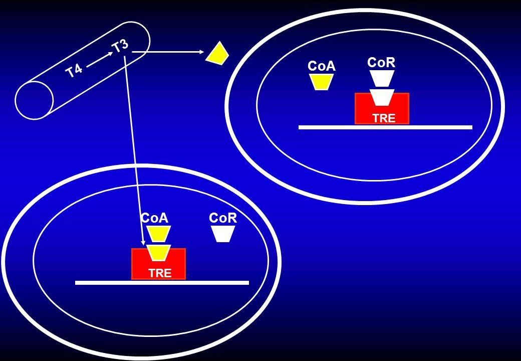 T4 T3 CoR CoA CoRCoA TRE