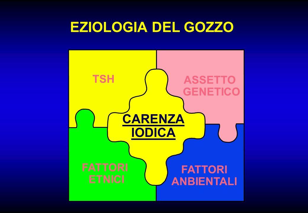 EZIOLOGIA DEL GOZZO FATTORI ETNICI TSH ASSETTO GENETICO FATTORI ANBIENTALI CARENZA IODICA