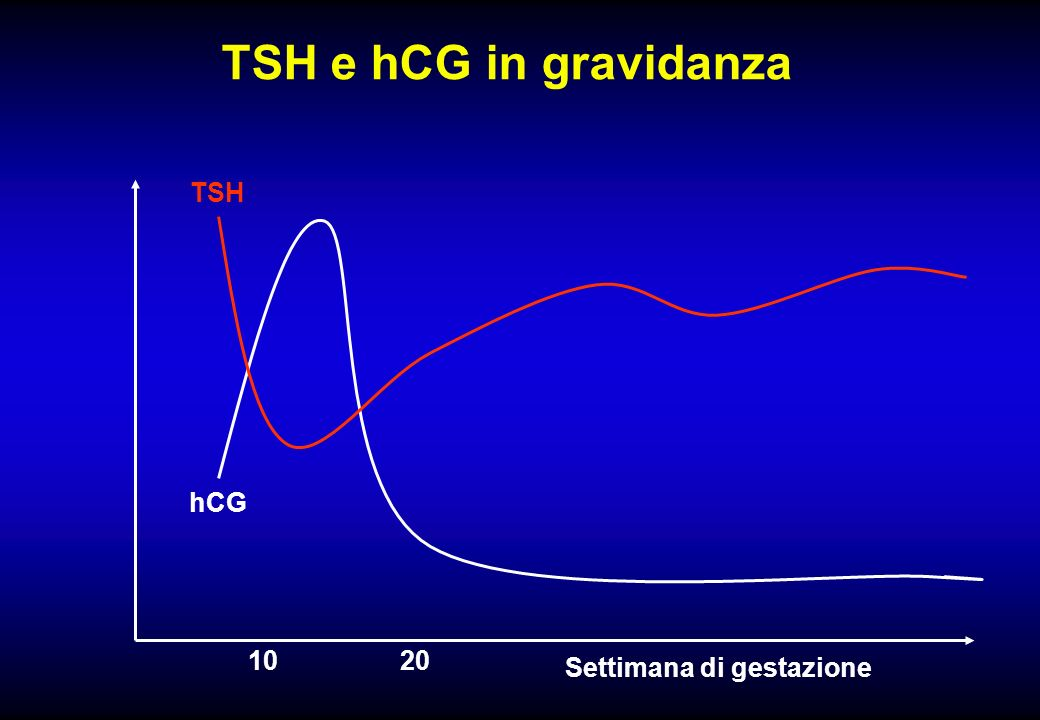 TSH e hCG in gravidanza TSH hCG 1020 Settimana di gestazione