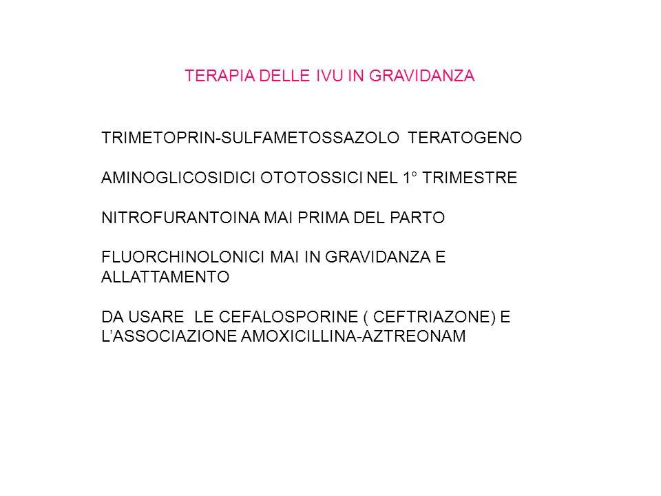TERAPIA DELLE IVU IN GRAVIDANZA TRIMETOPRIN-SULFAMETOSSAZOLO TERATOGENO AMINOGLICOSIDICI OTOTOSSICI NEL 1° TRIMESTRE NITROFURANTOINA MAI PRIMA DEL PARTO FLUORCHINOLONICI MAI IN GRAVIDANZA E ALLATTAMENTO DA USARE LE CEFALOSPORINE ( CEFTRIAZONE) E LASSOCIAZIONE AMOXICILLINA-AZTREONAM