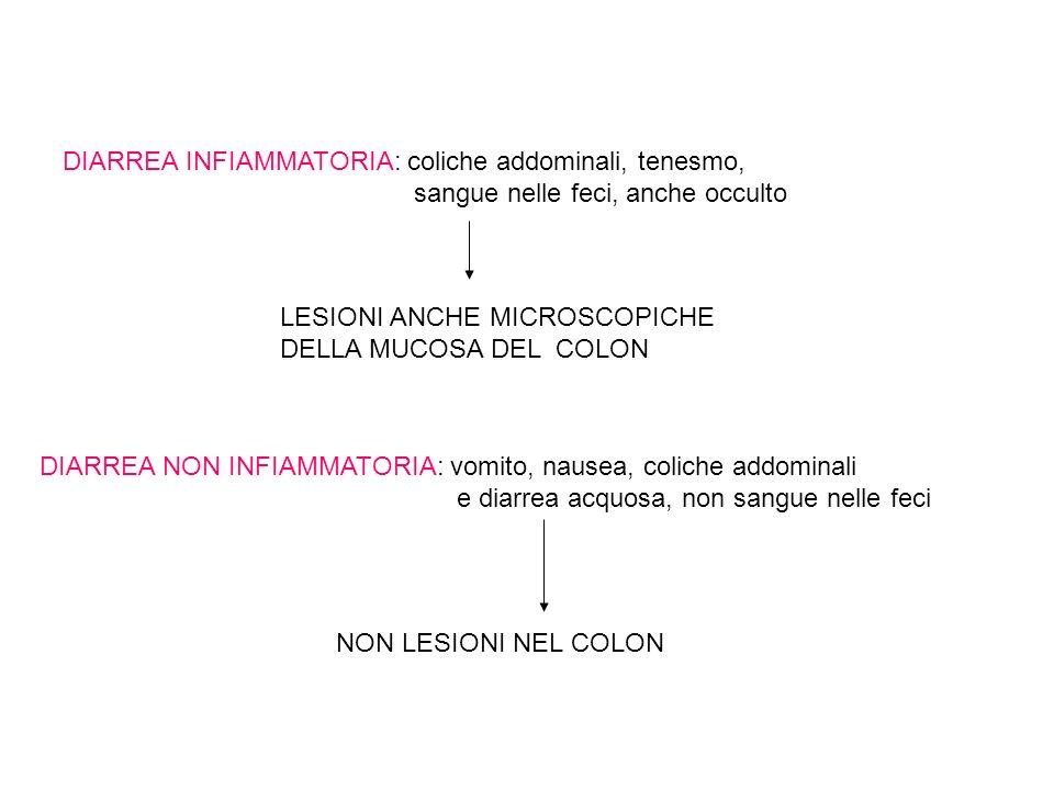 DIARREA INFIAMMATORIA: coliche addominali, tenesmo, sangue nelle feci, anche occulto DIARREA NON INFIAMMATORIA: vomito, nausea, coliche addominali e diarrea acquosa, non sangue nelle feci LESIONI ANCHE MICROSCOPICHE DELLA MUCOSA DEL COLON NON LESIONI NEL COLON