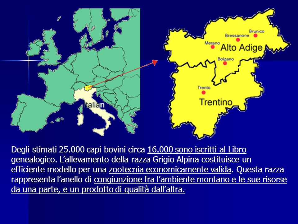 Origine e zona di diffusione La zona di origine è la Val Rendena (Trentino).