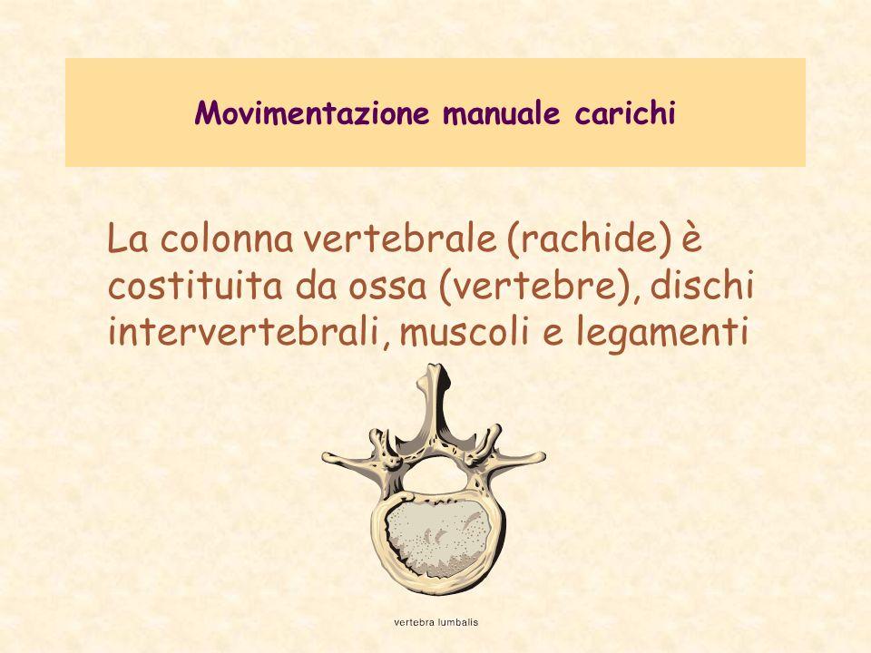 Movimentazione manuale carichi POSSIBILI DANNI stress compressivi becchi artrosici lombalgia da sforzo lombalgia da sforzo ernia del disco ernia del disco