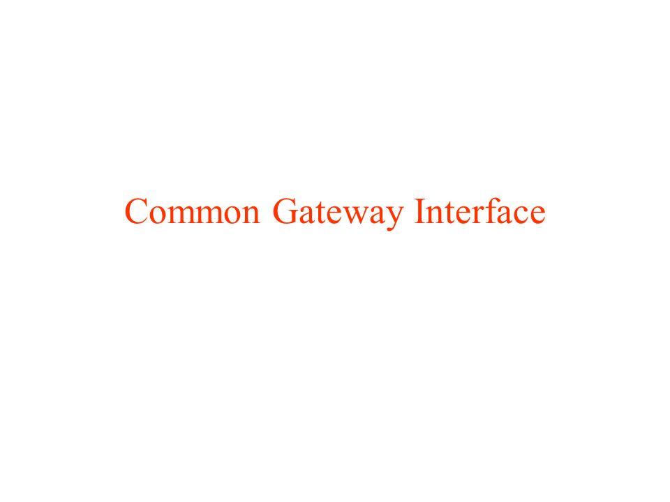 Dynamic HTML le risposte inviate al client sono (parzialmente o totalmente) create on-the-fly (al volo) dopo aver ricevuto il pacchetto di richiesta il contenuto delle pagine può variare di volta in volta in base a parametri diversi (ora del giorno, stato del sistema, dati trasmessi dal client).