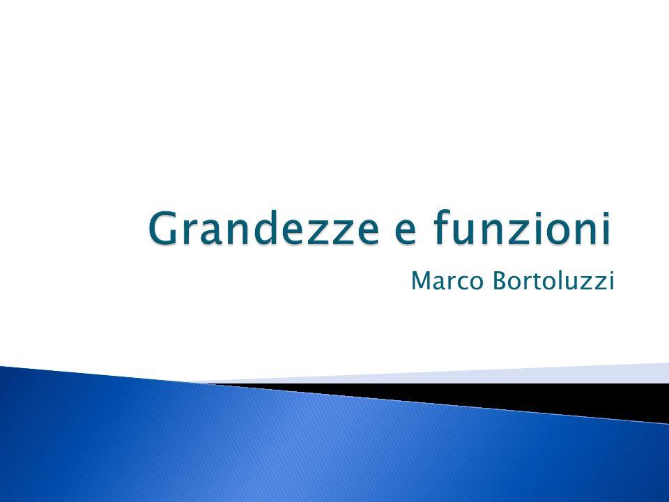Marco Bortoluzzi