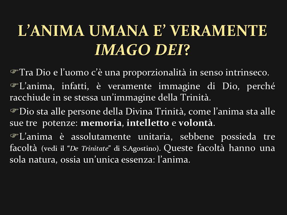LANIMA DI ADAMO LANIMA DI ADAMO Dist.XVII – Titolo II – Quest.