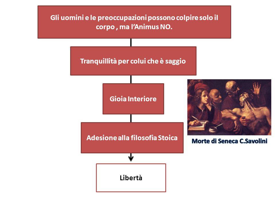 Seneca mette a confronto la figura: Catone Uticense Caligola Socrate mediante P O S I T V A NEGATIVANEGATIVA TOLLERANZA